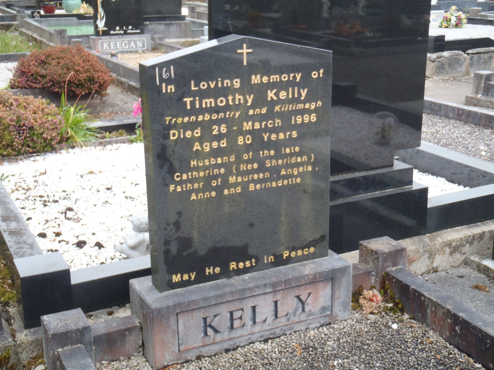 Irish Graveyards :: Plot Information